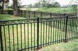 Clôture enduite personnalisée de jardin de poudre noire de qualité