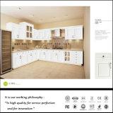 新しく熱い販売の木の食器棚(ZH078)