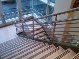 Het openlucht Traliewerk van het Dek van de Leuning van het Balkon van het Roestvrij staal Moderne