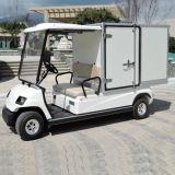 2台の人の電気ゴルフカートのホテル車