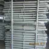 Galvanizado en caliente Zds Ringlock andamios/construcción/ANDAMIO