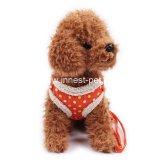 Cablaggio arancione Charming del cane di inverno del cavo dell'animale domestico