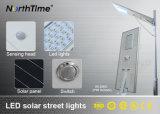 Bridgelux LED 칩을%s 가진 무료 샘플 IP65 태양 가로등
