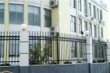 Высокомарочным шикарным декоративным загородка гальванизированная садом стальная 6-4 обеспеченностью