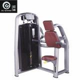 De speld Geladen Apparatuur van de Geschiktheid van de Gymnastiek van de Machine Sm8012 van de Pers van de Triceps