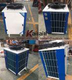 Chinesischer Hersteller-Oberseite-Luft-Anschluss-geschlossener Kompressor-kondensierendes Gerät (Gebrauch-hermetischer Rollekompressor)