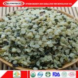 Preço industrial por atacado da semente de cânhamo de China muito bom