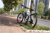 Groene Stad 27.5 de Elektrische Fiets Ebike van de Berg voor Verkoop