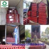 De aangepaste Regelbare Steun van het Staal van de Steiger voor Ethiopië