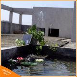 Pomp van het Water van de Pool van de Tuin van de Pomp van de Fontein van het Zonnepaneel van het Water van het landschap de Mini9V 2.5W Zonne