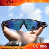 Os óculos de sol permutáveis do esporte das lentes UV400 da boa qualidade protegem para o cavaleiro e a ciclagem com embalagem dura do caso