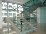 Het aangepaste Wit van de Trap van het Loopvlak van het Traliewerk van het Glas Houten