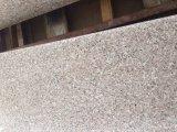 G635 de granit de dalles en pierre naturelle/tuiles/marches d'escalier
