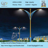 China Fornecedor LED de exterior a Iluminação Decorativa Pole
