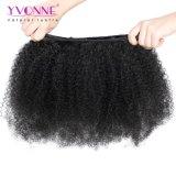Yvonne 머리 도매 모발 제품 아프로 비꼬인 곱슬머리 브라질 사람의 모발 직물
