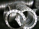 Borde del diámetro grande del acero inoxidable de la fuente