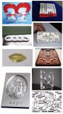 Ezletter Kugel-Schrauben-Reklameanzeige-und Metallstich CNC-Fräser (MD103ATC)