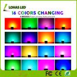 Mando a distancia Foco exterior proyector RGB LED