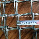 Frontière de sécurité enduite de maillon de chaîne de vinyle