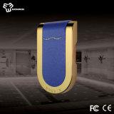 Fechamento do gabinete da ginástica do metal com borda dourada