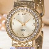 Orologi su ordinazione di modo della vigilanza del quarzo delle donne di marchio per le signore (WY-17007D)