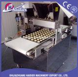 Équipement de boulangerie Cookie en acier inoxydable / Biscuit Machine