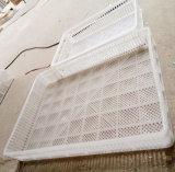 Panier de hachure de couleur blanche de volaille de Digitals grand pour des incubateurs d'oeufs