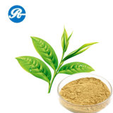 Kosmetische Polyphenol van de Thee (CAS 989-51-5)