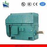 Motore a corrente alternata Trifase ad alta tensione di raffreddamento Air-Air di serie 6kv/10kv di Ykk Ykk5001-6-450kw