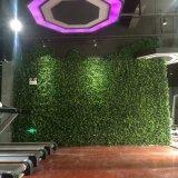 Piante e fiori artificiali della parete verticale Gu-Mx-Green-Wall004
