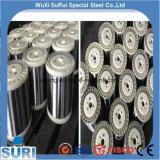 AISI ASTM JIS DIN 304 316 316L 0,02 0,03 0,04 0,05 0,06 0,07 0,08 0,09 0,15 0,12 0,1 mm de acero inoxidable alambre delgado