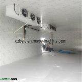 Conservazione frigorifera di vendite della fabbrica, cella frigorifera, surgelatore, parti di refrigerazione