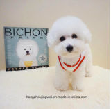 محبوب عرضيّ [إيس كرم] كلب جرو [ت-شيرت] بيع بالجملة جميل جديد تصميم محبوب منتوج يكسو كلب كلب ملابس نمو [بت دوغ] [ت] قميص