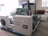Cer genehmigte 10 Tonne Flack Eis-Maschine Manufaturer für Supermarkt