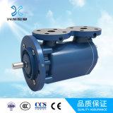 Schrauben-Pumpe der Xinglong Marken-drei