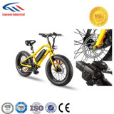 Electric Motorcycle Custom E-Bike Wholesale China