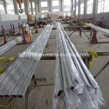 AISI316L Quadrado Tubo de aço inoxidável sem costura