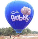 Colrful und verschiedene konzipierte populäre heiße Ballons