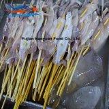 De bevroren Vleespen van de Pijlinktvis van het Noorden van Zeevruchten Vreedzame
