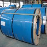 Bobine en acier inoxydable de qualité Premium (ASTM 317 Grade)