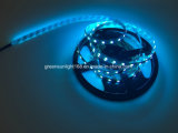 Großhandels-SMD 5050 LED Streifen für Raum-Beleuchtung