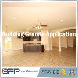 Granito, marmo, parte superiore di vanità del quarzo e lastra di pietra del controsoffitto della cucina