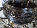 Fil rond en acier inoxydable&un fil plat pour matériaux de construction