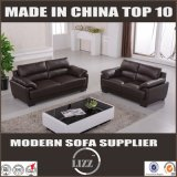 Disegni stabiliti del sofà domestico della mobilia