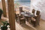 Restaurante Home ao ar livre Destileen do escritório do hotel da mobília do pátio que janta a cadeira do Rattan e a tabela (J3066R)