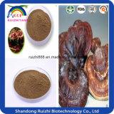 Pó de esporo Natural Ganoderma / Ganoderma Lucidum Spore Powder