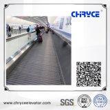 0° piscina que se deslocam a pé escadas rolantes com boa qualidade e preço competitivo