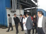 Creatina de la fábrica de China para el extracto natural CAS de la planta del Bodybuilding: 57-00-1