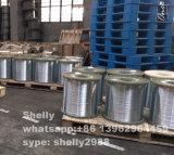 Arame de aço para reforço de concreto Gancho de extremidade Fibra de aço, fabricante de fio de aço, fio de aço de alto carbono
