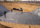 HDPE Geomembrane используемое в ферме рыб